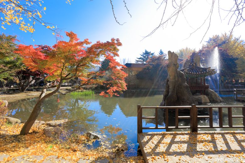 Korea nami 780x520 - Tour du lịch Hàn quốc: Seoul – Jeju - Đảo Nami - Everland