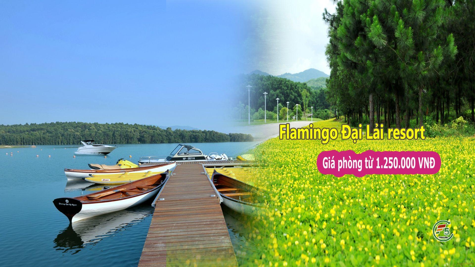 Vietnam Hanoi Flamingo 1920x1080 - TRANG CHỦ